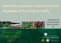Potentially Important Leafy Greens and Vegetables in the Western Pacific