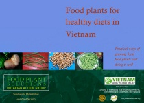Food Plants for Healthy Diets in Vietnam