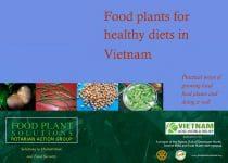Food Plants for Healthy Diets in Vietnam