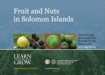 Solomon Islands Fruit and Nuts