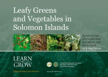 Leafy Greens and Vegetables