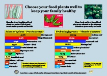Choose your food plants well to keep your family healthy