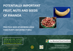 Potentially Important Fruit, Nuts and Seeds of Rwanda