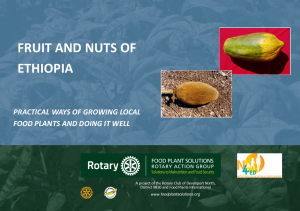 View Ethiopia Field Guide